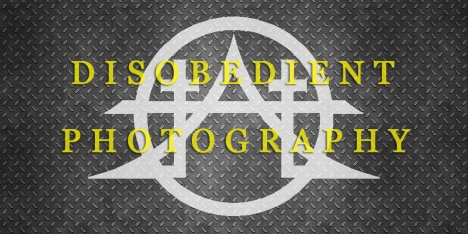 DISOBEDIENT PHOTOGRAPHY BANNER WIDE THINNER WITH YELLOW 2 (JPEG)